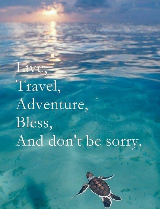 happy vacation quotes