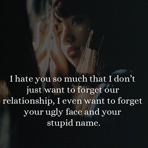 hate love status