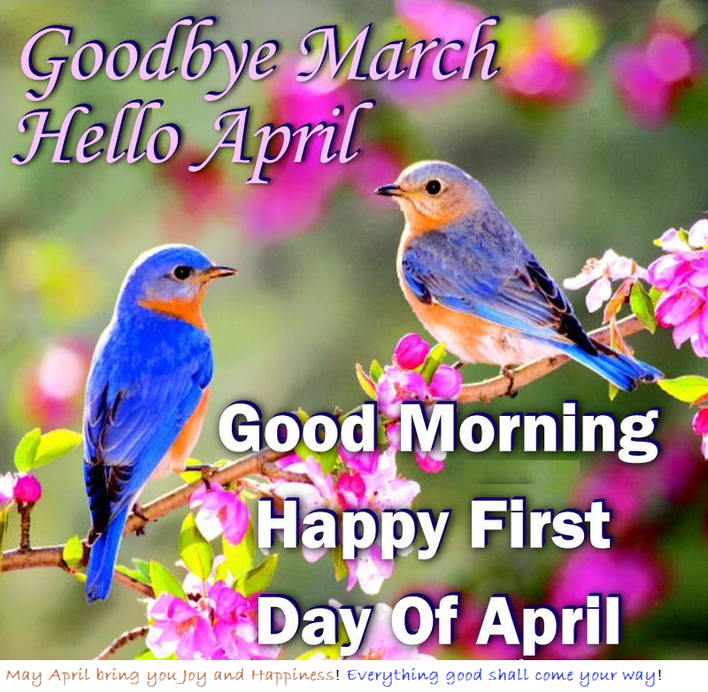 april new month whatsapp status quote