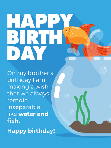 birthday wishes for brother in another country