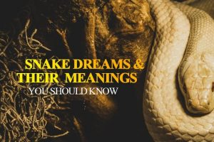being chased by a snake in a dream